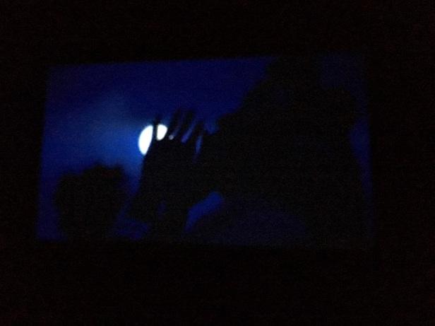 ay ışığında yıkanan kadınlar canan kaf dağının ardında arter madam martha burgazada video